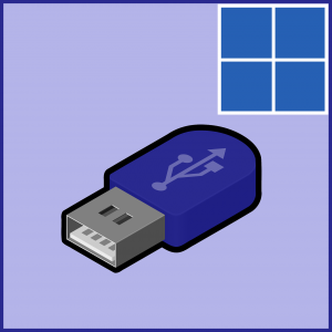 Windows 10 -- USB Not Working - Featured - Windows Wally